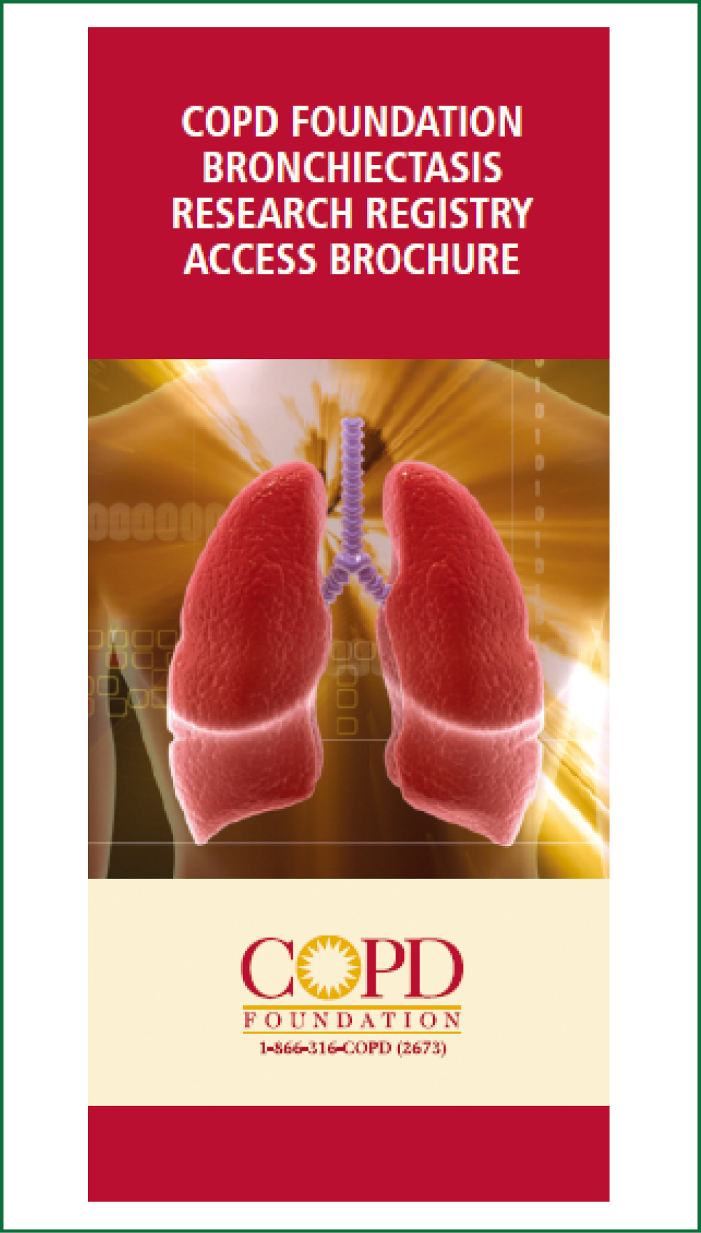 living well with copd patient education guide